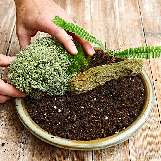 How to make a moss garden in miniature 4