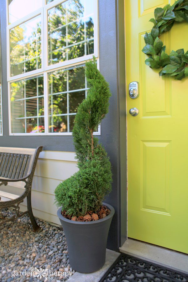 Care and maintenance of a topiary decorative 12