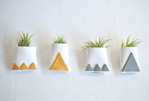 Decorating Ideas with air plants 15