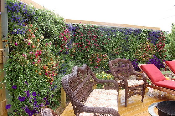 Improvement easily in the privacy of your garden 3