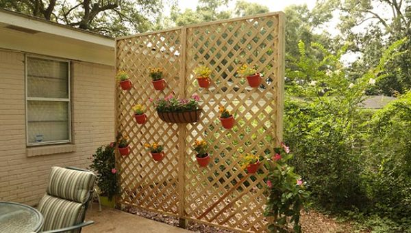 Improvement easily in the privacy of your garden 7
