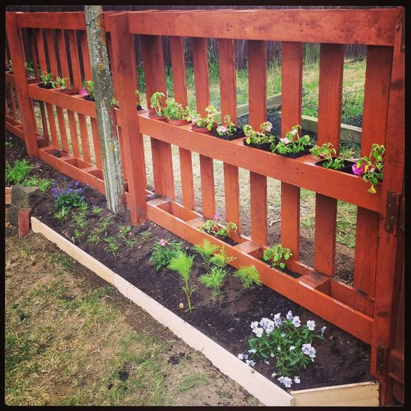 Improvement easily in the privacy of your garden 22