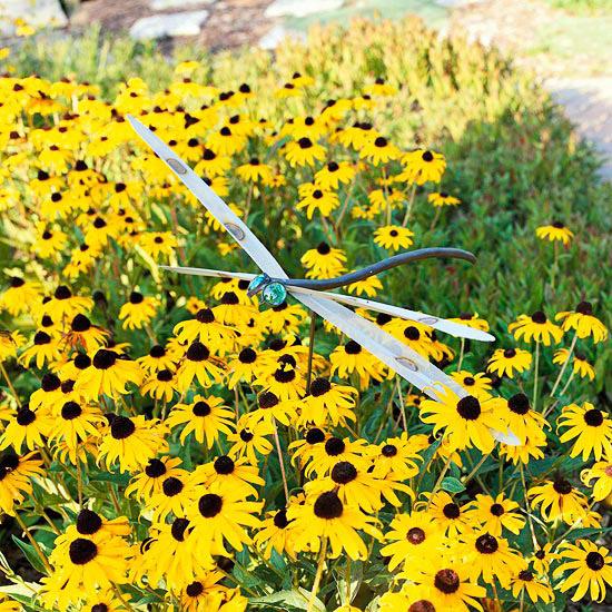 20 perennial flower for your garden 14