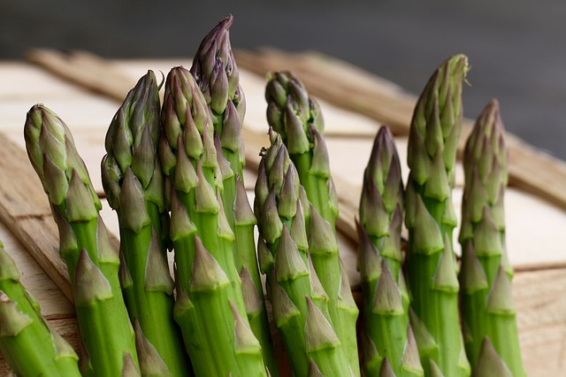 How to grow asparagus in pot 1