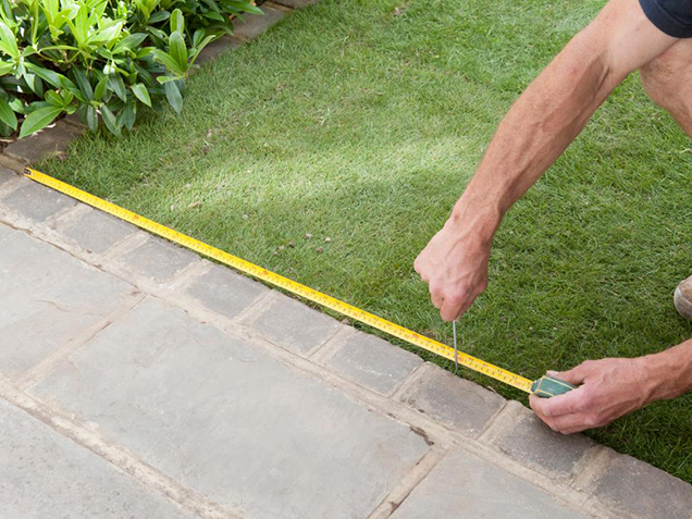 How to give shape to the lawn 1