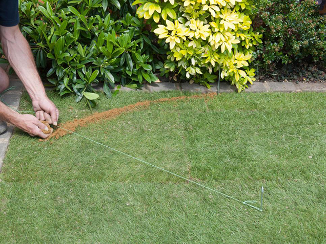 How to give shape to the lawn 2
