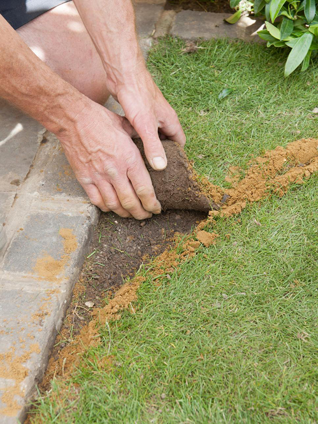 How to give shape to the lawn 4