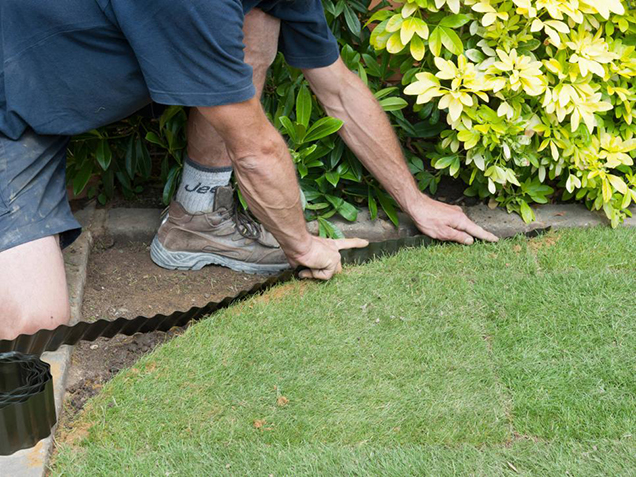 How to give shape to the lawn 5