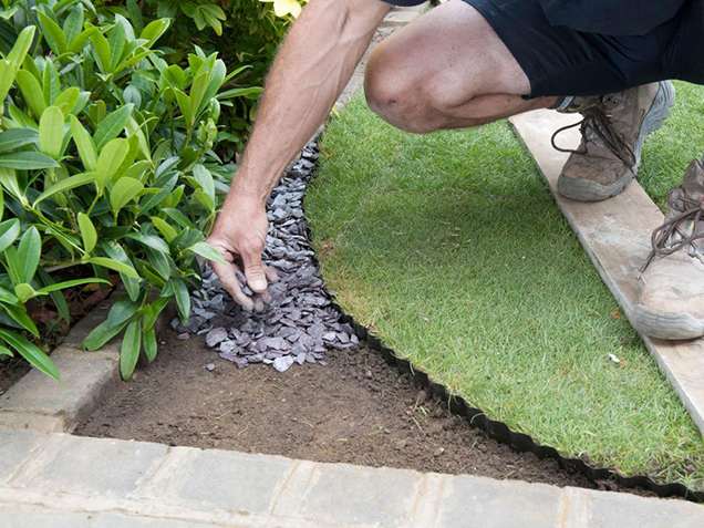 How to give shape to the lawn 6