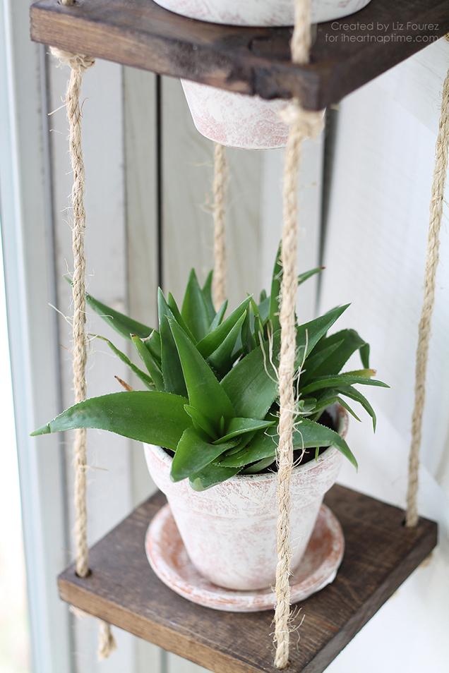 Build a vertical garden hanging 15