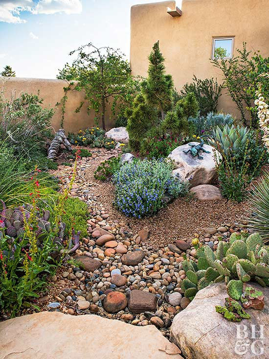 A garden adapted to the drought 1