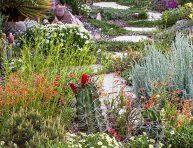 imagen Un jardín adaptado a la sequía