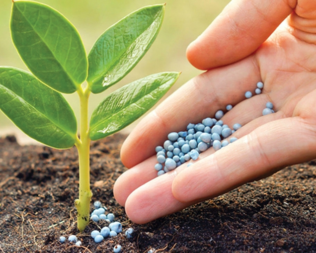 Abonos minerales para las plantas