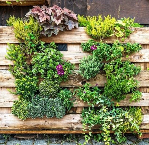 Las mejores ideas para crear tu propio jardín vertical