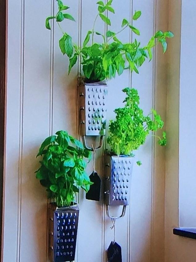 Las mejores ideas para crear tu propio jard n vertical for Jardin vertical para cocina