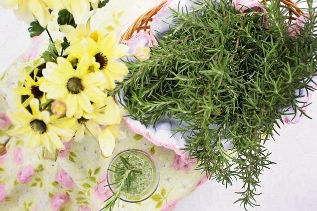 hierbas para la cocina que puedes cultivar en casa 1