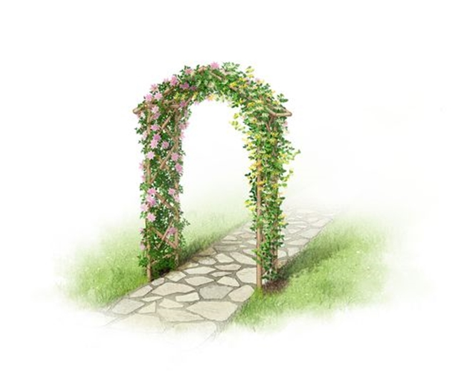 Foro De Opinion Noticias Y Entretenimiento Flores Y Jardines - Arcos-de-jardin
