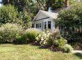 imagen Plantas para un jardín delantero de pocas dimensiones