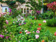 imagen Consejos para crear un jardín inglés (cottage garden)