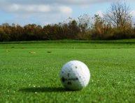 imagen Cómo tener un césped con aspecto a campo de golf en casa