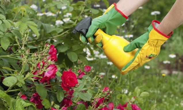 fertilizantes y pesticidas organicos