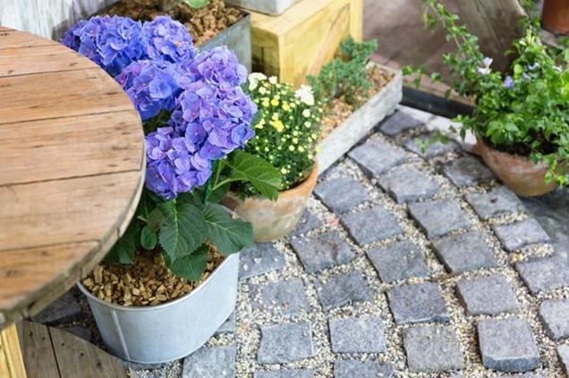 8 Ideas De Diseno De Jardines Que Te Encantaran