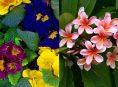 imagen Las flores más fragantes según los jardineros