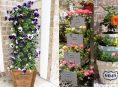imagen 10 torres de flores impresionantes para decorar tu jardín