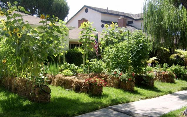 Por que deberias agregar fardos de paja en el jardin