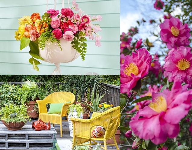 ideas para realzar la belleza de tu jardin