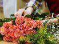 imagen ¿Qué variedades de flores son las mejores para cortar?