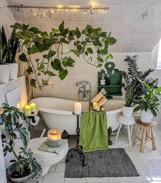 incorporar plantas en el bano