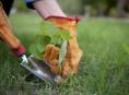 imagen 6 trabajos para el jardín de otoño
