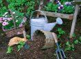 imagen 9 consejos de jardinería para principiantes
