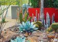imagen Consejos para diseñar un jardín del desierto