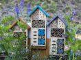 imagen Cómo crear un hotel de insectos para el jardín