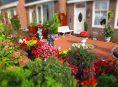 imagen 10 maneras de transformar tu patio en un paraíso