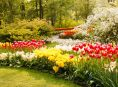 imagen 8 ideas de diseño de jardines que no te puedes perder
