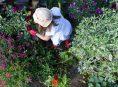 imagen 7 herbicidas caseros que matarán malezas y plantas invasoras