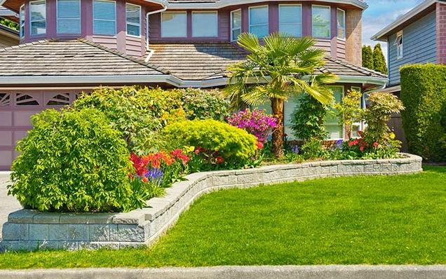 paisajismo para el patio delantero
